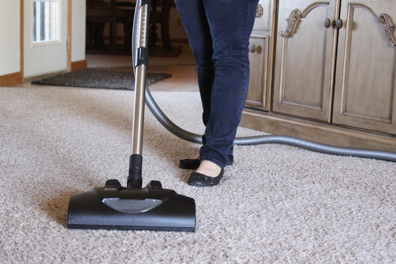 wessel vacuum brush
